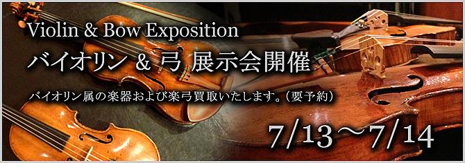 vb_expo